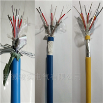 ZRKX-GS-VPVP6*2*1.0热电偶补偿电缆