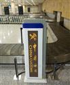 通道式行人/行包輻射監測系統