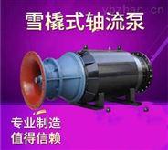 水利工程雪橇式潛水軸流泵生產廠家