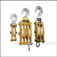 电力承装修试三级设备20~50kN起重滑车