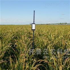 株高测量仪TPDM-G-1