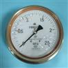 Y-153B-FZ不銹鋼耐震壓力表