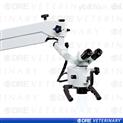 大动物手术显微镜