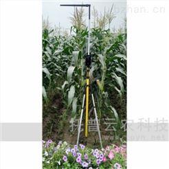 杭州-玉米株高测定仪图片\参数