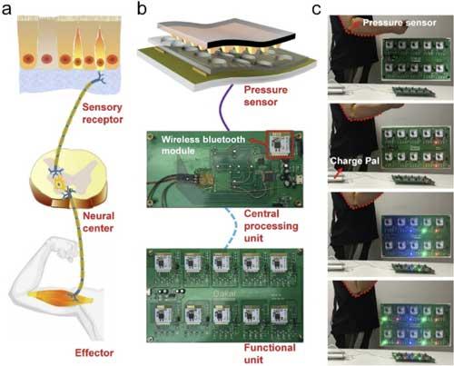 中科院研發超高靈敏度的壓力傳感器 可用于人機交互