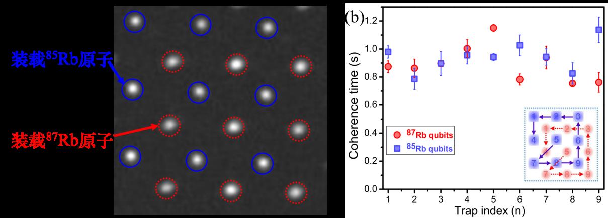 精密測量院實現秒級均衡相干時間的異種原子量子比特