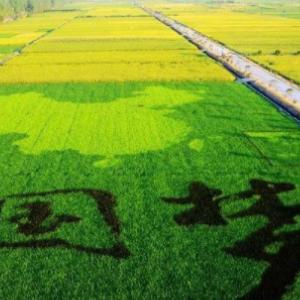使用传感器+物联网技术助力农业优化升级,促进农业绿色发展