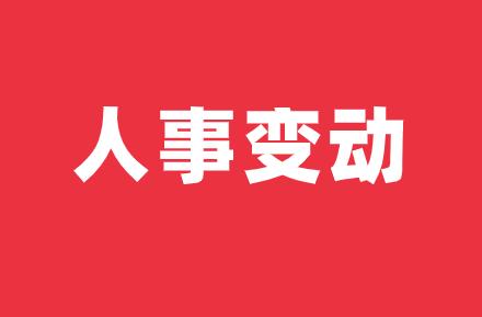 威胜控股委任李鸿为公司执行董事