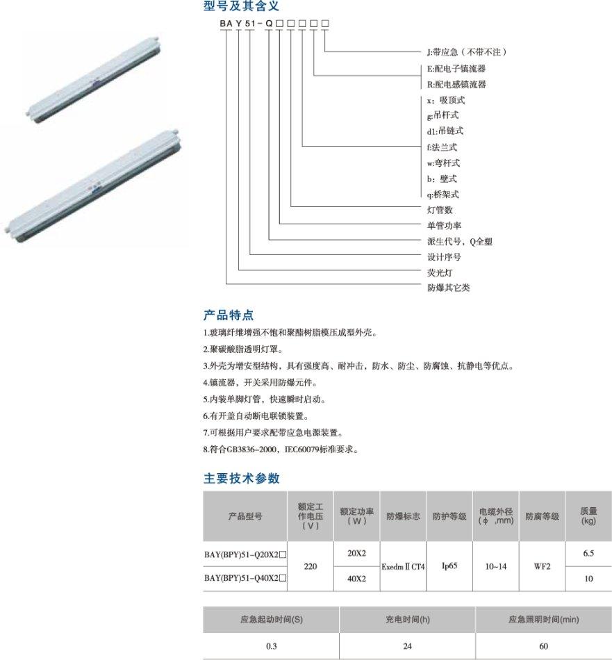 BAY51-Q系列增安型防爆防腐全塑荧光灯