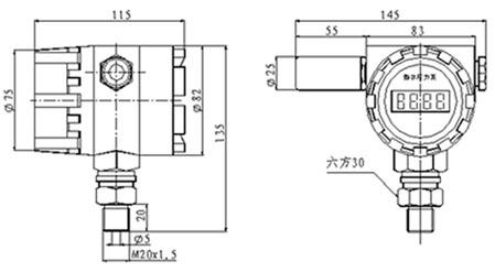 csy-3gd-无线数字压力传感器