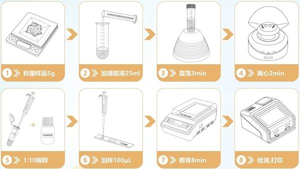 小麦呕吐毒素检测流程