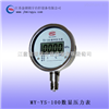 数显压力表 电子式标准表厂家供应