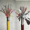 KX-GS-VPVP4*2*1.0熱電偶補償電纜